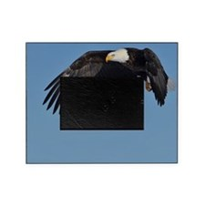Beautiful Eagle Picture Frame