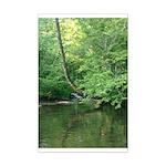 River Scene Mini Poster Print
