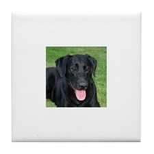 Cute Black labrador retriever Tile Coaster