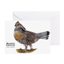 Ruffed Grouse Greeting Cards (Pk of 10)