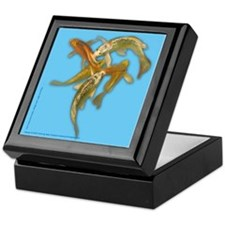 Butterfly koi Keepsake Box