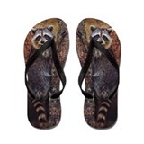Raccoon Flip Flops