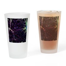 Nerve cell growth - Drinking Glass