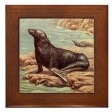 Sealion Framed Tile