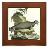 Walrus Framed Tile