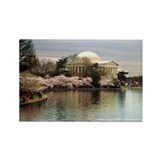 Thomas Jefferson Memorial Rectangle Magnet