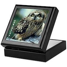 Curiosity Owl Keepsake Box