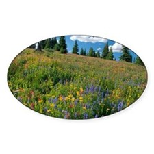 Wildflower meadow - Decal