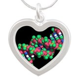 DNA molecule - Silver Heart Necklace