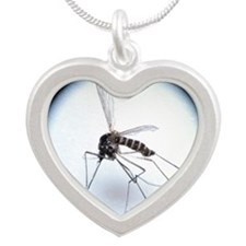 uito (Anopheles sp.) - Silver Heart Necklace