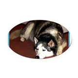 Husky! Dog photo! Oval Car Magnet