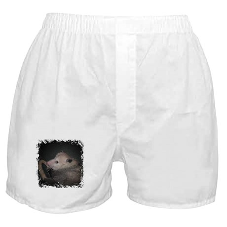 Sleepy Possum Boxer Shorts