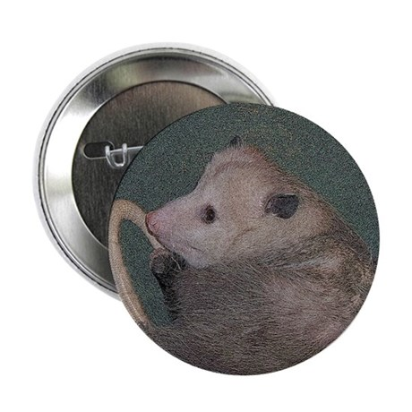 "Sleepy Possum 2.25"" Button (10 pack)"