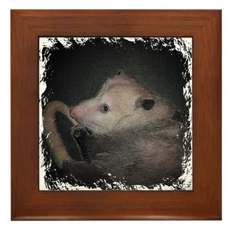 Sleepy Possum Framed Tile