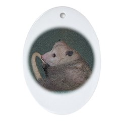 Sleepy Possum Oval Ornament