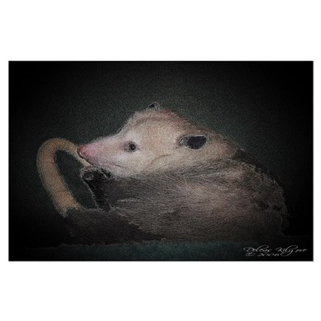 Sleepy Possum Large Poster