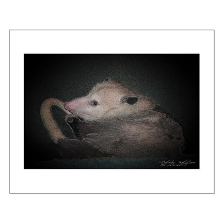 Sleepy Possum Small Poster