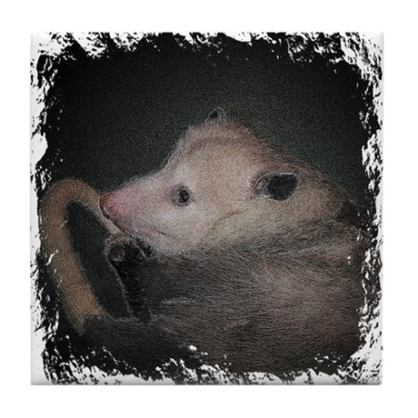 Sleepy Possum Tile Coaster