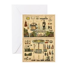 Apprentice Greeting Cards (Pk of 10)