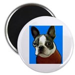 BOSTON TERRIER 2.25