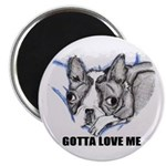 GOTTA LOVE ME BOSTON TERRIER ART Magnet