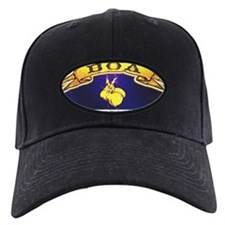 Unique Arkansas Baseball Hat