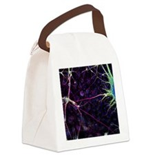 Nerve cell growth - Canvas Lunch Bag
