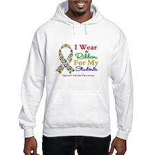 Students Autism Ribbon Hoodie