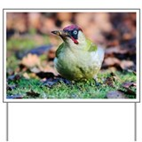 Green woodpecker - Yard Sign