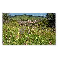 Romanian village - Decal