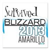 Survived Blizzard 2013 Amarillo Square Car Magnet