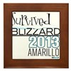 Survived Blizzard 2013 Amarillo Framed Tile