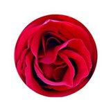 "Red Rosa OKeefe 3.5"" Button"