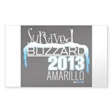 Survived Blizzard 2013 Amarillo - black Decal