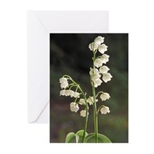 Cute Spring garden Greeting Cards (Pk of 10)
