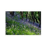 Bluebell wood - Rectangle Magnet