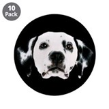 Dalmatian Face 3.5&quot; Button (10 pack)