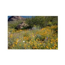 Desert wildflowers - Rectangle Magnet