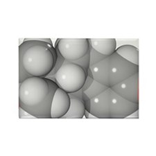 Oestrone hormone molecule - Rectangle Magnet