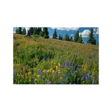 Wildflower meadow - Rectangle Magnet