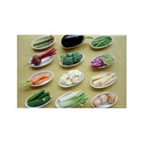 Vegetables - Rectangle Magnet (10 pk)