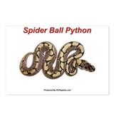Funny Python Postcards (Package of 8)