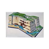 Karst landscape - Rectangle Magnet (10 pk)