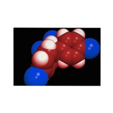 DDT molecule - Rectangle Magnet (100 pk)
