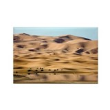dunes - Rectangle Magnet (100 pk)