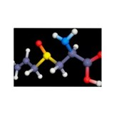 Alliin molecule - Rectangle Magnet (100 pk)