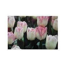 llan' flowers - Rectangle Magnet (100 pk)