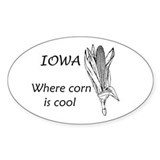 Iowa is Cool Oval Decal