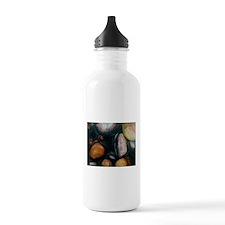 Creek Rocks Water Bottle