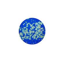 Poliovirus particles, TEM - Mini Button